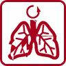 icona grado protezione respirazione optrel